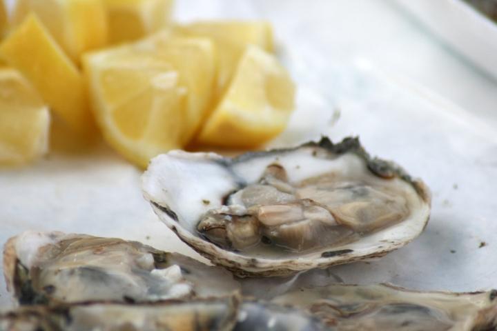 Tanuki Raw Oysters
